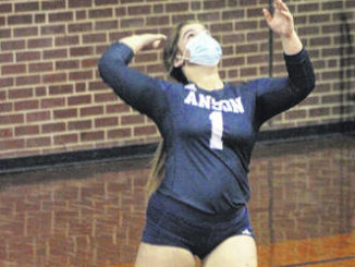 Volleyball players receive honors